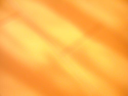 【画像】とある暖かい冬の朝、日射しと影をポラデジ izone 550で撮影