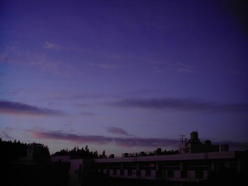 【画像】ポラデジ izone 550で澄んだ冬の朝焼けを撮影2