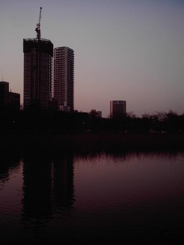 【画像】上野恩賜公園、不忍池とビルをポラデジ izone 550で撮影
