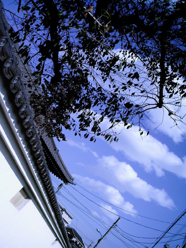 【画像】塀の瓦と雲の連続性