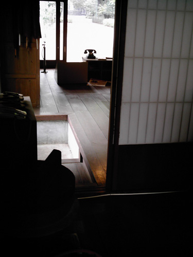 【画像】ポラデジ izone 550で江戸東京たてもの園内の村上精華堂を撮影2