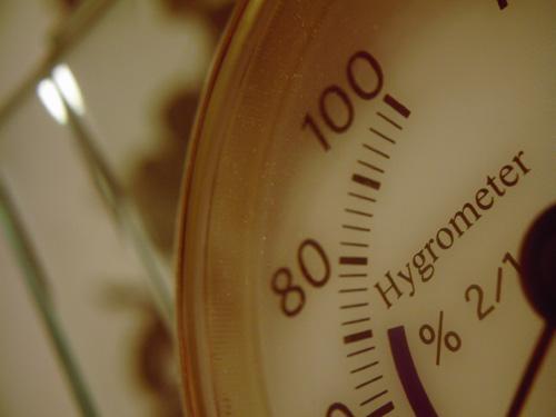 【画像】ポラデジ izone 550で撮影した比重計