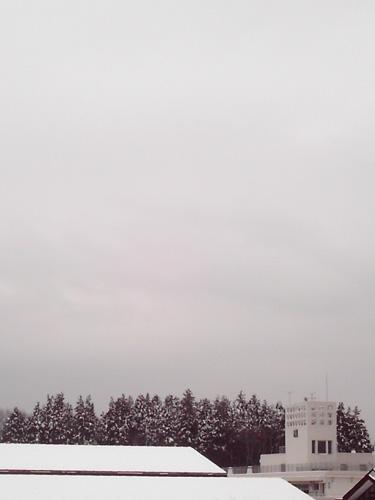 【画像】ポラデジ izone 550で撮影した冬空と雪景色